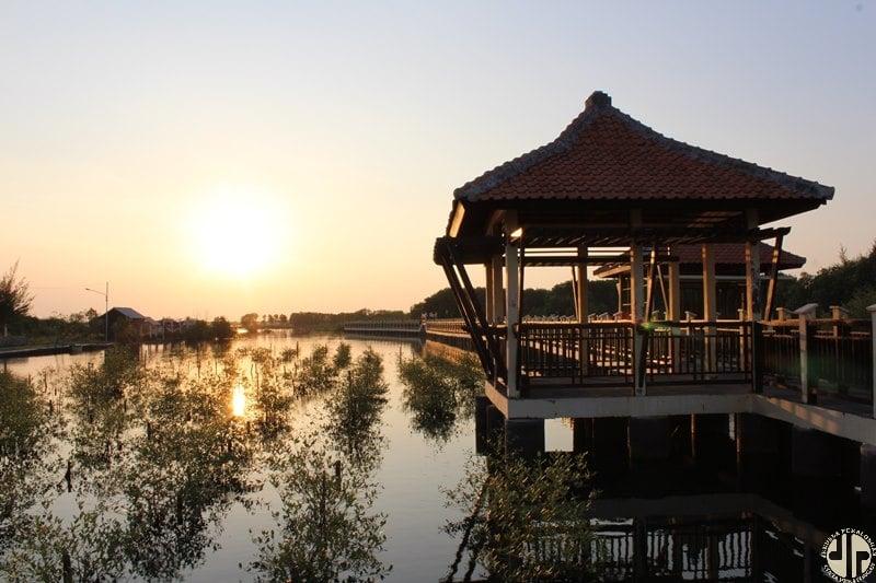 Taman Mangrove Pekalongan