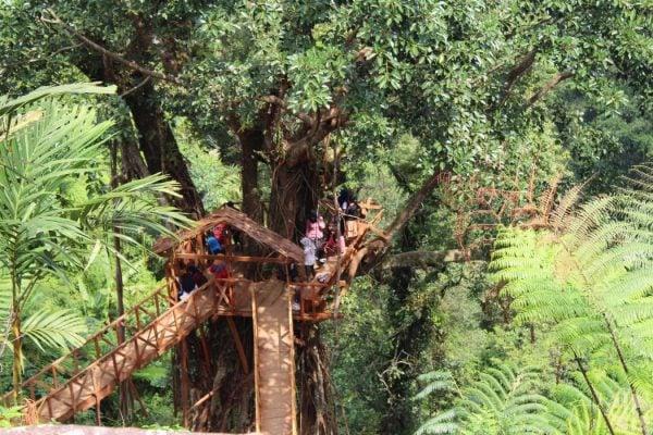Rumah Pohon Desa Tombo - Bandar Kabupaten Batang