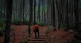 Spot Wana Wisata Curug Lawe - by arifwicaksono19