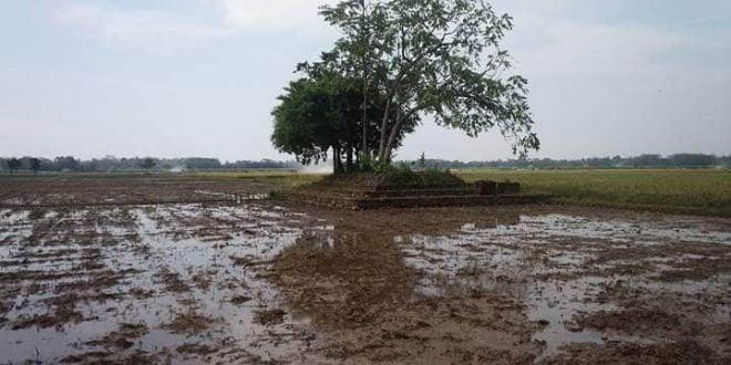 Situs Gumuk Sigit Rejosari Bojong