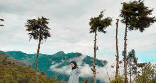 Wisata Bukit Sigemplong Batang
