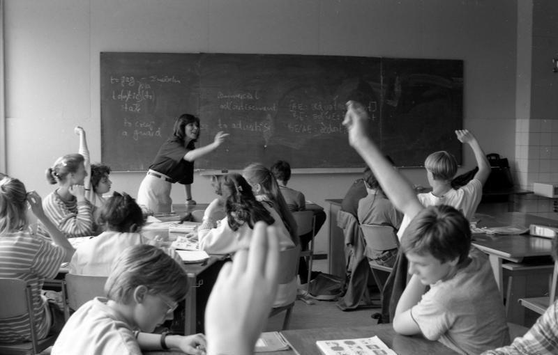 Pedagogi